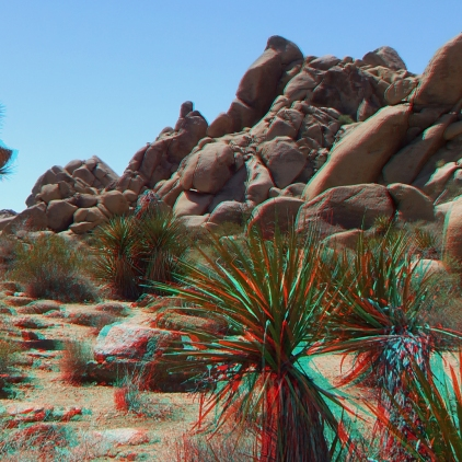 The Hen House Joshua Tree NP 3DA 1080p DSCF7321