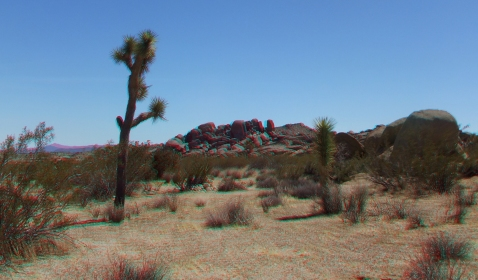 The Hen House Joshua Tree NP 3DA 1080p DSCF7370