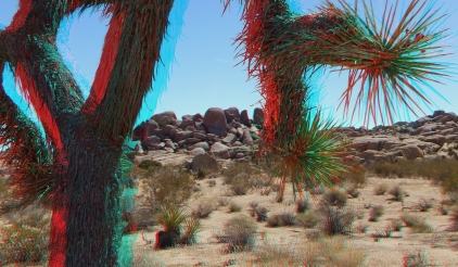 The Hen House Joshua Tree NP 3DA 1080p DSCF7377