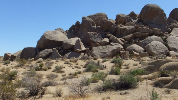 The Hen House Joshua Tree NP DSCF7423