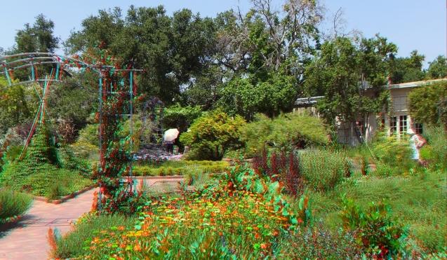 Huntington Herb Garden 3DA 1080p DSCF0337