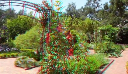 Huntington Herb Garden 3DA 1080p DSCF0340