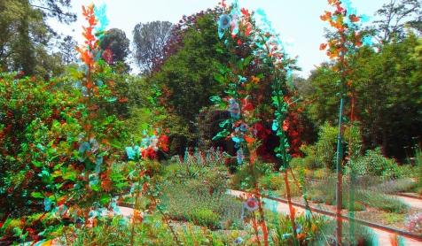 Huntington Herb Garden 3DA 1080p DSCF0347