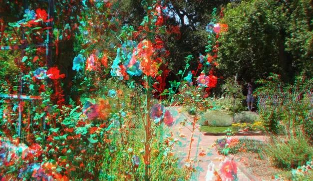 Huntington Herb Garden 3DA 1080p DSCF2373