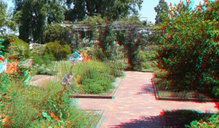 Huntington Herb Garden 3DA 1080p DSCF2380
