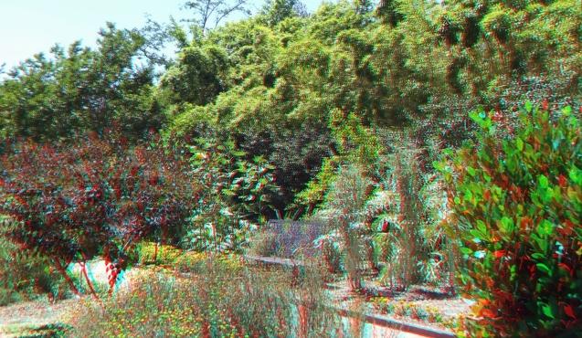 Huntington Herb Garden 3DA 1080p DSCF2381