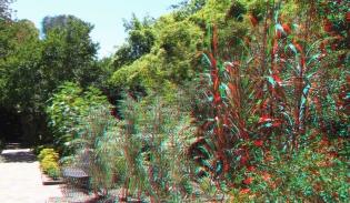 Huntington Herb Garden 3DA 1080p DSCF2383