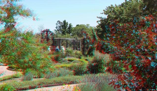Huntington Herb Garden 3DA 1080p DSCF2385