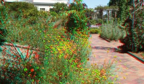 Huntington Herb Garden 3DA 1080p DSCF2391