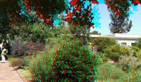 Huntington Herb Garden 3DA 1080p DSCF2392