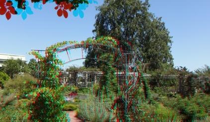 Huntington Herb Garden 3DA 1080p DSCF2393