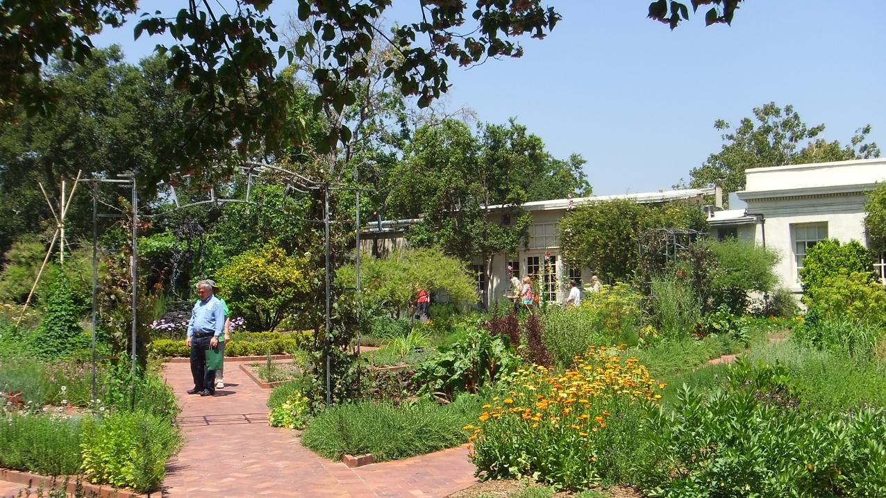 Huntington Herb Garden DSCF0333