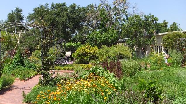 Huntington Herb Garden DSCF0337