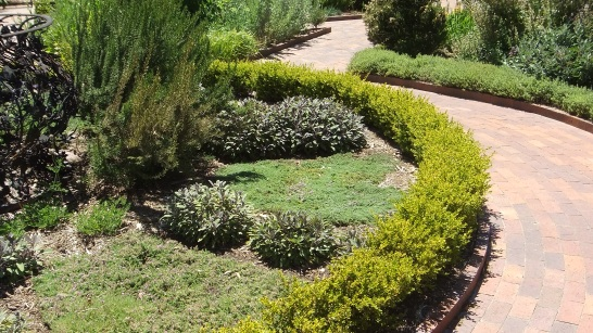 Huntington Herb Garden DSCF2376
