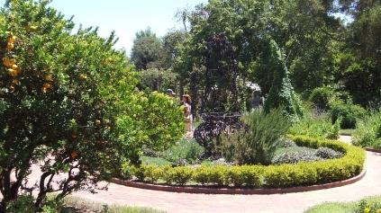 Huntington Herb Garden DSCF2379