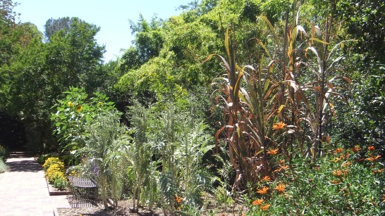 Huntington Herb Garden DSCF2383