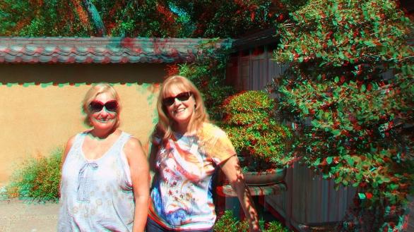Huntington Bonsai Garden 3DA 1080p DSCF7726