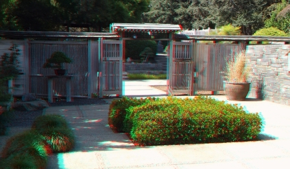 Huntington Bonsai Garden 3DA 1080p DSCF7738