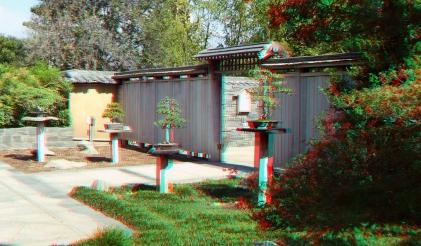 Huntington Bonsai Garden 3DA 1080p DSCF7756