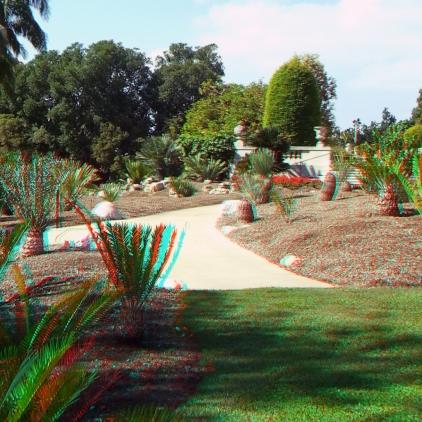 Huntington Cycad Garden 3DA 1080p DSCF7517