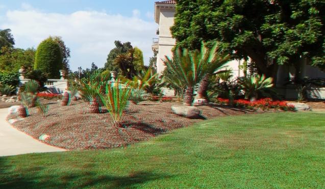 Huntington Cycad Garden 3DA 1080p DSCF7518