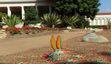 Huntington Cycad Garden 3DA 1080p DSCF7542