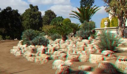 Huntington Cycad Garden 3DA 1080p DSCF7551