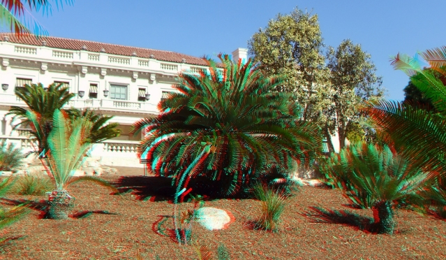 Huntington Cycad Garden 3DA 1080p DSCF7614