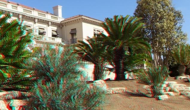 Huntington Cycad Garden 3DA 1080p DSCF7625
