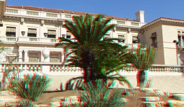 Huntington Cycad Garden 3DA 1080p DSCF7626
