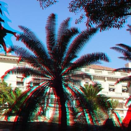 Huntington Cycad Garden 3DA 1080p DSCF7652