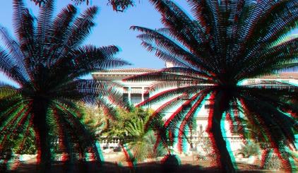 Huntington Cycad Garden 3DA 1080p DSCF7655