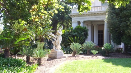 Huntington Cycad Garden DSCF7684