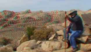 Joshua Tree NP Favorites 1 3DA 1080p DSCF2561