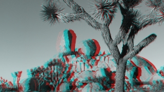 Joshua Tree NP Favorites 1 3DA 1080p DSCF6310