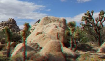 Joshua Tree NP Favorites 1 3DA 1080p DSCF6522