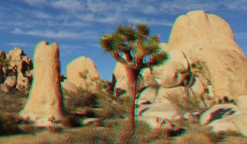 Joshua Tree NP Favorites 1 3DA 1080p DSCF7568