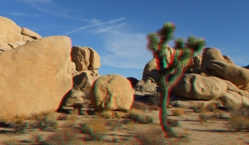 Joshua Tree NP Favorites 1 3DA 1080p DSCF8595