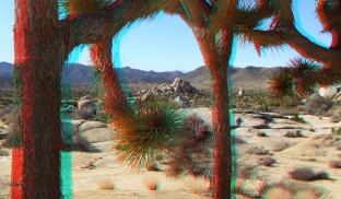 Joshua Tree NP Favorites 1 3DA 1080p DSCF9503