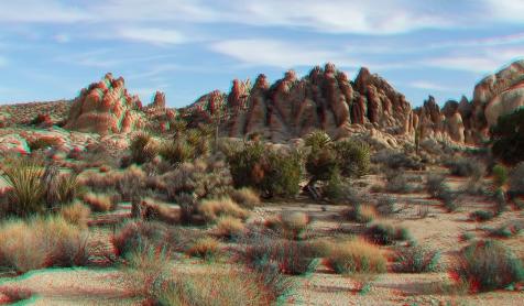 Joshua Tree NP Favorites 2 3DA 1080p DSCF2881