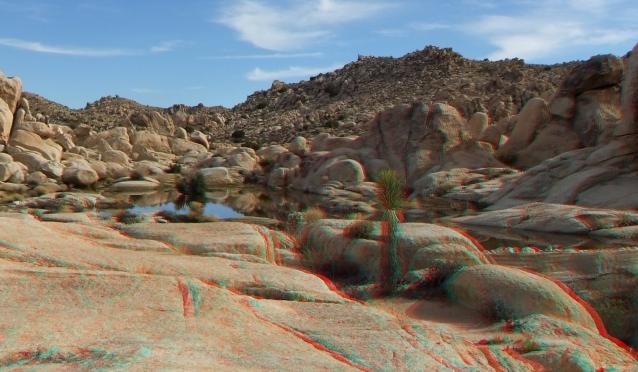 Joshua Tree NP Favorites 3 3DA 1080p DSCF2653