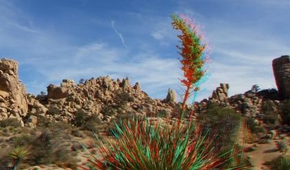Joshua Tree NP Favorites 3 3DA 1080p DSCF8244