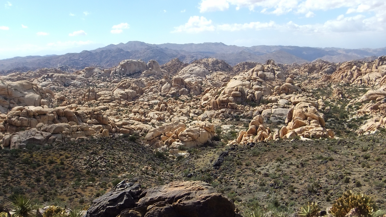 Joshua Tree NP Favorites 3 Wonderland of Rocks DSCF6342