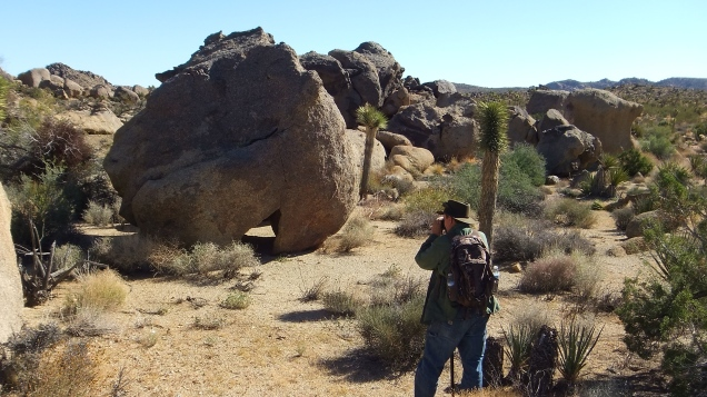 Unusual boulder in Queen Valley near Pictograph Rock