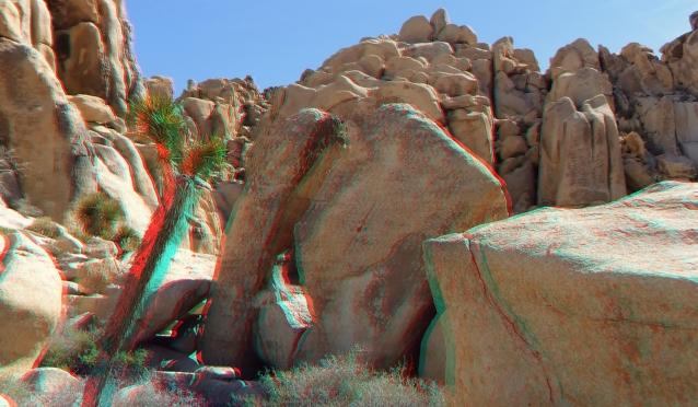 Joshua Tree NP Favorites 5 3DA 1080p DSCF2199