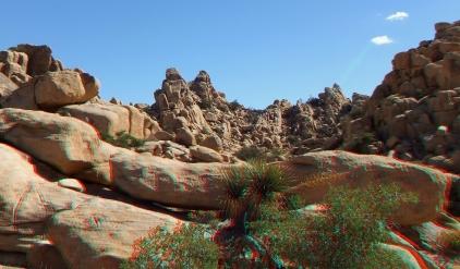Joshua Tree NP Favorites 5 3DA 1080p DSCF2585