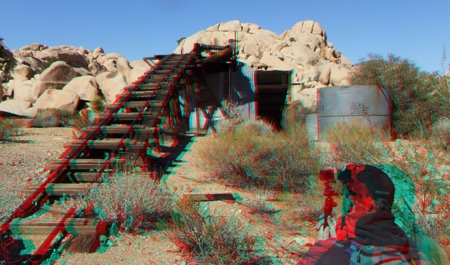 Joshua Tree NP Favorites 5 3DA 1080p DSCF2929