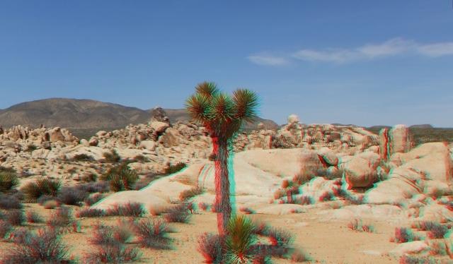 Joshua Tree NP Favorites 5 3DA 1080p DSCF3662