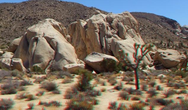 Joshua Tree NP Favorites 5 3DA 1080p DSCF4544