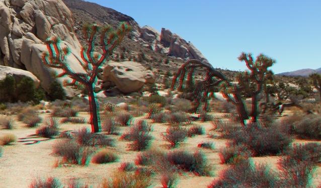 Joshua Tree NP Favorites 5 3DA 1080p DSCF4545